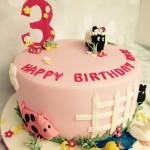 Cake_Leeds Birthday_18012016_Birthday4